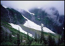 Cascades and snowfields, below Cascade Pass, North Cascades National Park. Washington, USA. (color)