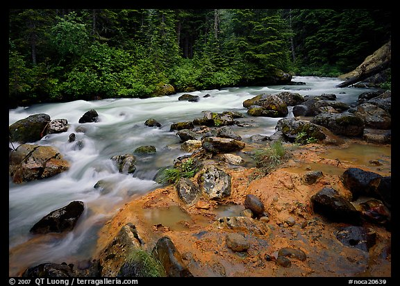 Creek near Kennedy hot springs. North Cascades National Park (color)