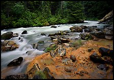 Creek near Kennedy hot springs, Glacier Peak Wilderness, Mt. Baker/Snoqualmie National forest. Washington (color)