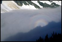 Sun projected on clouds filling Cascade River Valley,. Washington, USA. (color)