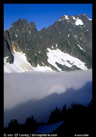 Peaks above fog-filled Cascade River Valley, early morning, North Cascades National Park.  (color)