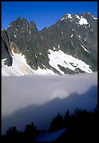 Peaks above fog-filled Cascade River Valley, early morning, North Cascades National Park. Washington, USA.