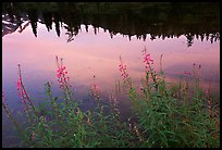 Reflections in Picture lake, sunset,  North Cascades National Park. Washington, USA.