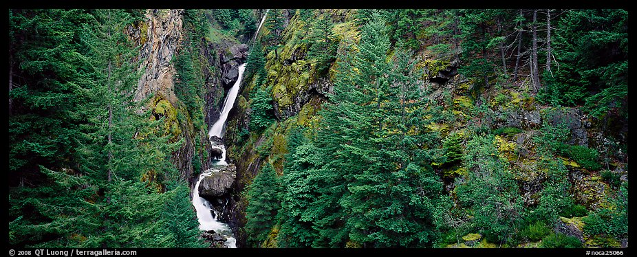 Waterfall in gorge surrounded by forest, North Cascades National Park Service Complex.  (color)