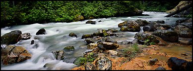 Stream in forest with colored mud, Mt. Baker/Snoqualmie National forest. Washington (Panoramic color)