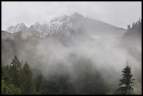 Peaks and fog, North Cascades National Park. Washington, USA.
