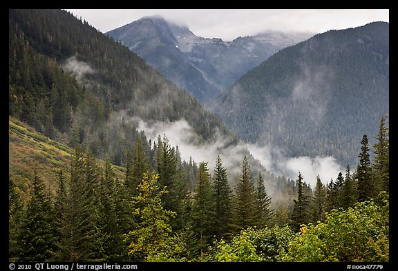 North Fork of the Cascade River Valley, North Cascades National Park.  (color)