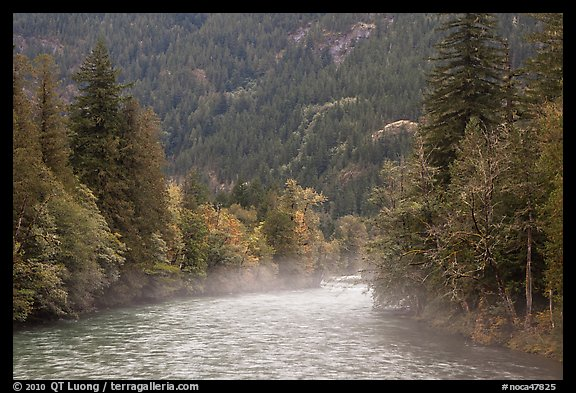Fog rising from the Skagit River, North Cascades National Park Service Complex.  (color)