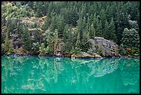 Forest reflected in turquoise waters, Gorge Lake, North Cascades National Park Service Complex. Washington, USA.