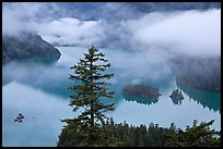 Fog hanging above Diablo Lake, North Cascades National Park Service Complex. Washington, USA. (color)