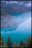 Turquoise waters and fog, Diablo Lake, North Cascades National Park Service Complex. Washington, USA. (color)
