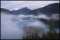 Low fog rolling over Diablo Lake, dawn, North Cascades National Park Service Complex. Washington, USA.