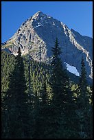 Greybeard Peak rising above forest, North Cascades National Park. Washington, USA.