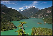Diablo Lake from overlook,  North Cascades National Park Service Complex. Washington, USA.