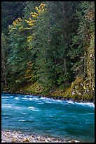 Stream in autumn, Gorge Lake, North Cascades National Park Service Complex.  ( color)