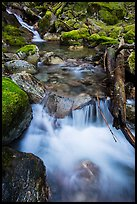 Cascading creek, North Cascades National Park Service Complex.  ( color)