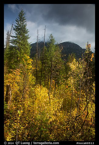 McGregor Mountain under dark sky in autumn, North Cascades National Park.  (color)