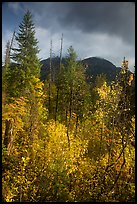 McGregor Mountain under dark sky in autumn, North Cascades National Park.  ( color)