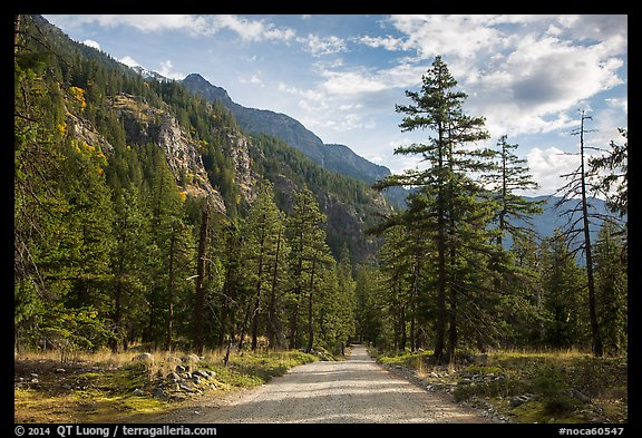 Road, Stehekin Valley, North Cascades National Park Service Complex.  (color)