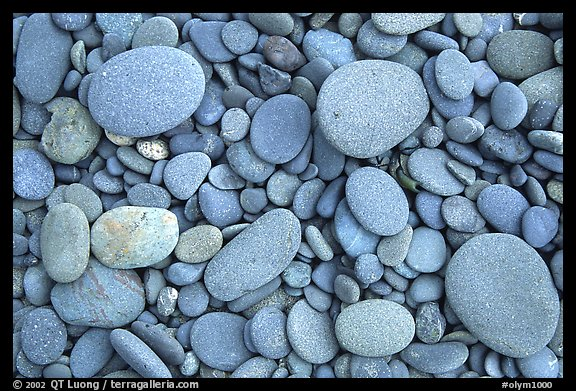Round pebbles on beach. Olympic National Park (color)