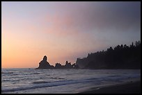 Sunset, Shi-Shi Beach. Olympic National Park, Washington, USA.
