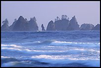 Waves and seastacks, Shi-Shi Beach. Olympic National Park, Washington, USA. (color)
