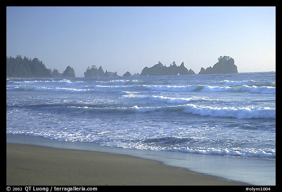 Seastacks, Shi-Shi Beach. Olympic National Park (color)