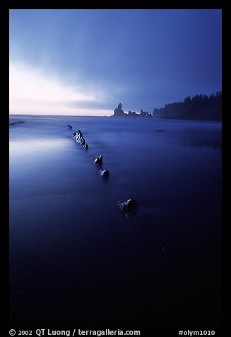 Dusk, Shi-shi beach. Olympic National Park (color)