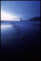 Dusk, Shi-shi beach. Olympic National Park, Washington, USA. (color)