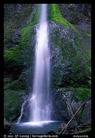 Marymere falls, spring. Olympic National Park (color)