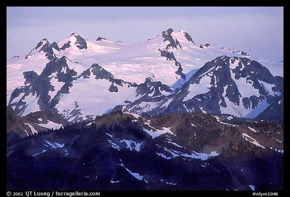 Mount Olympus at sunrise. Olympic National Park (color)