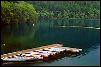 Emerald waters, pier and rowboats, Crescent Lake. Olympic National Park, Washington, USA.