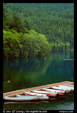 Small boats moored in emerald waters in Crescent Lake. Olympic National Park (color)