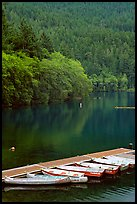 Small boats moored in emerald waters in Crescent Lake. Olympic National Park, Washington, USA.