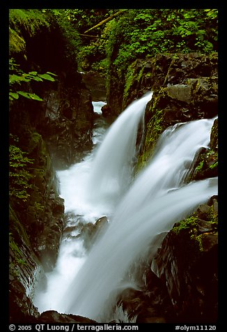 Sol Duc falls. Olympic National Park (color)
