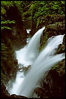 Sol Duc falls. Olympic National Park, Washington, USA. (color)