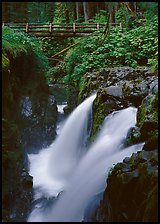 Sol Duc falls and wooden footbridge. Olympic National Park ( color)
