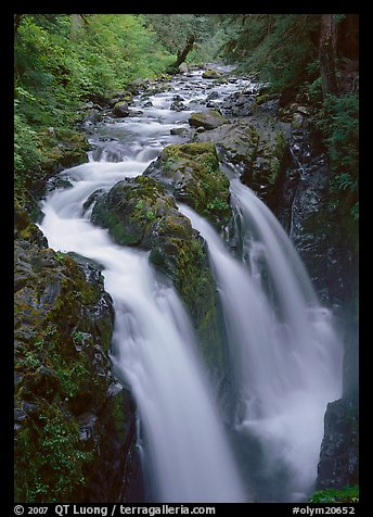 Sol Duc river and falls. Olympic National Park (color)