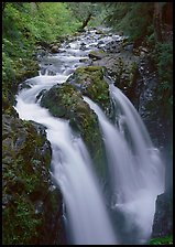 Sol Duc river and falls. Olympic National Park, Washington, USA.