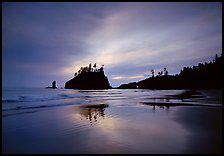 Seastacks reflected at sunset on wet sand, Second Beach. Olympic National Park ( color)