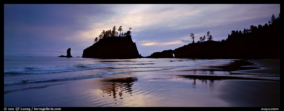 Second Beach with wet sand reflections. Olympic National Park (color)