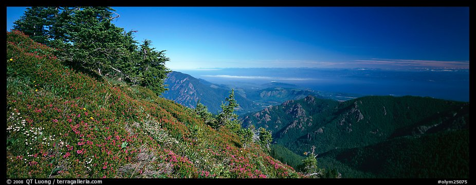 View over marine straight from mountains. Olympic National Park (color)