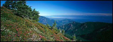 View over marine straight from mountains. Olympic National Park, Washington, USA.