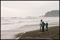 Family walking on Rialto Beach. Olympic National Park ( color)