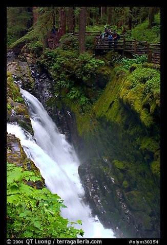 Sol Duc falls and observation platform. Olympic National Park (color)
