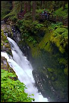 Sol Duc falls and observation platform. Olympic National Park ( color)