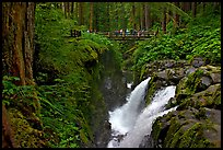 Soleduc falls and bridge. Olympic National Park, Washington, USA. (color)