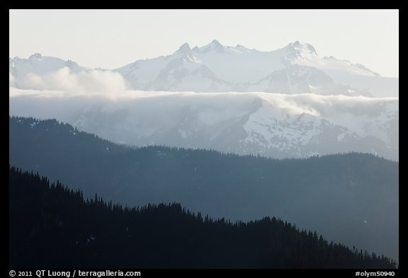 Olympic range and ridges. Olympic National Park (color)