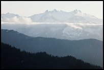 Olympic range and ridges. Olympic National Park, Washington, USA. (color)