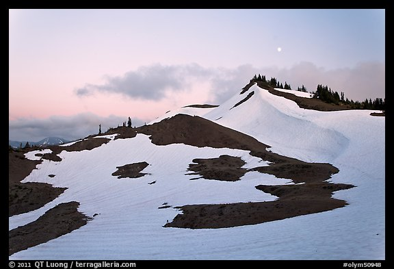 Neve on hill at dusk near Obstruction Point. Olympic National Park (color)